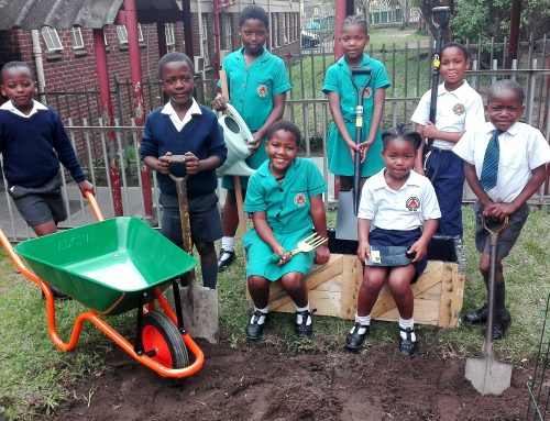 CSN EMPOWERS LOCAL COMMUNITY SCHOOLS